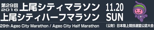 ageo-hm-2016-logo