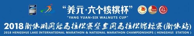 hengshui-mar-2018-logo